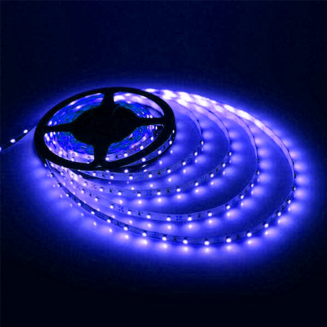 Strip Light-5mtr-12V-45W-Blue